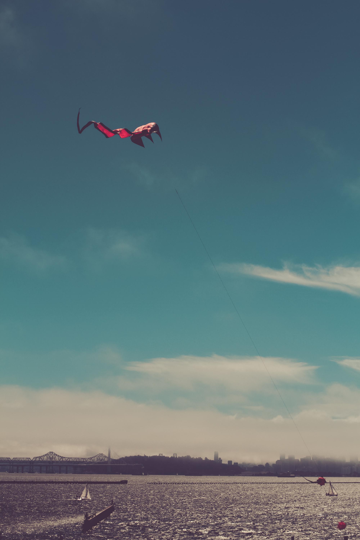 kites_print-6