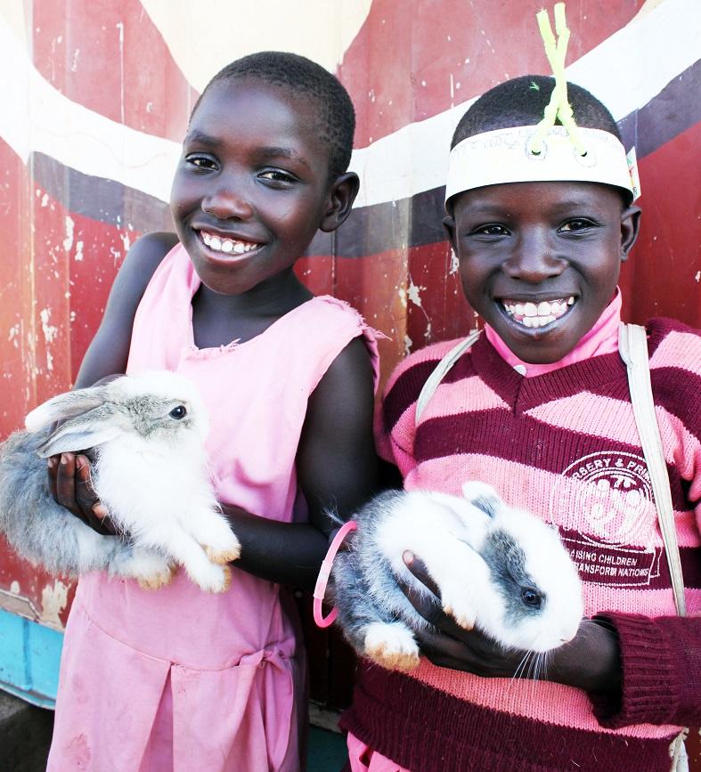 rabbitsbreeding_
